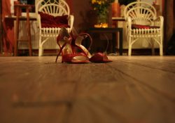 Högl - når sko ikke blot skal være sko